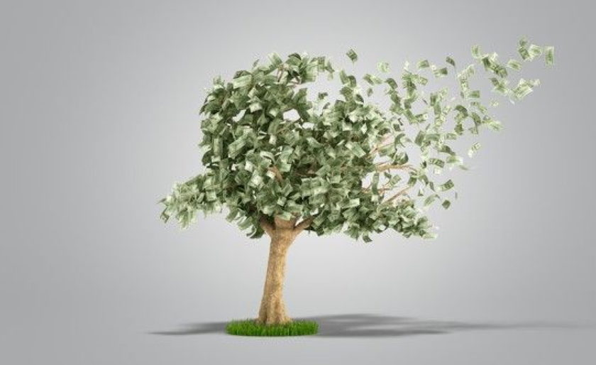 Casino Money Tree
